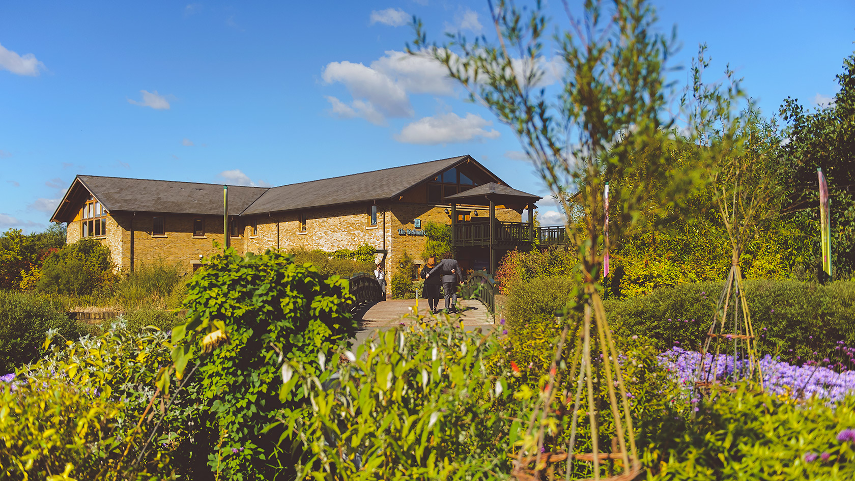 , London Wetlands Centre Wedding Photographer